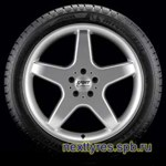 Gislaved Soft Frost 200 SUV 215/60 R17 96T